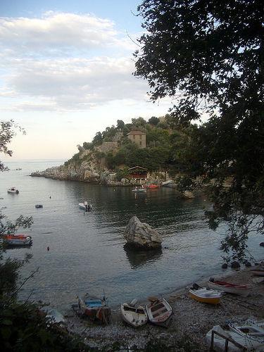damouchari2
